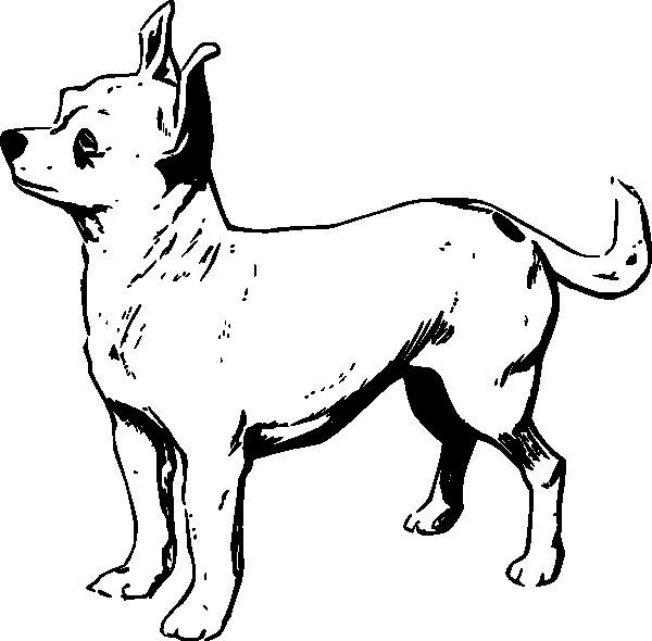 Disegno da colorare cane piuttosto serio for Cane da colorare e stampare