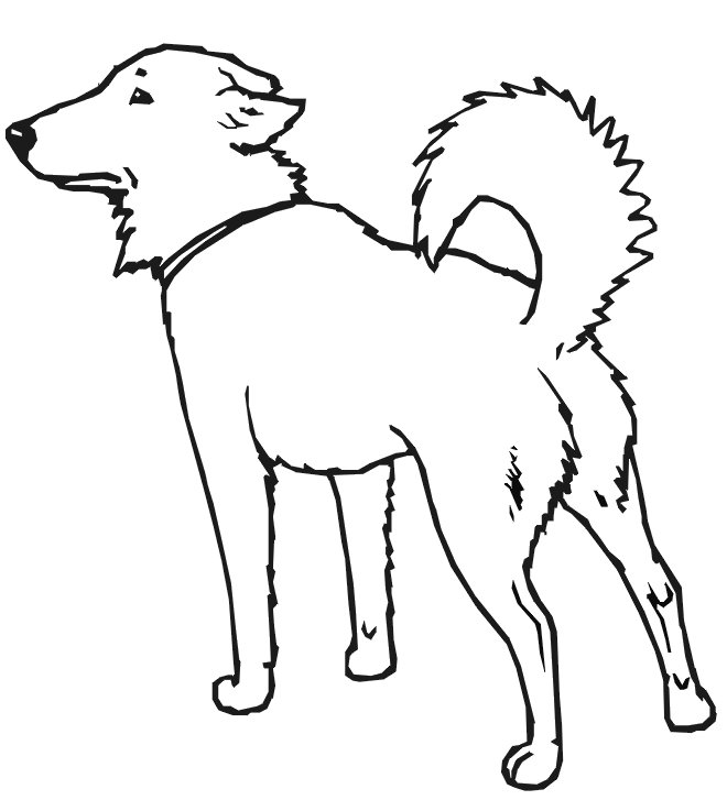 Disegno da colorare cane serio for Cane da colorare e stampare
