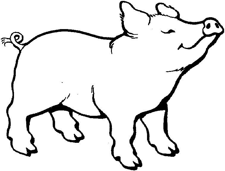 Disegno da colorare maialino felice for Maialino disegno per bambini